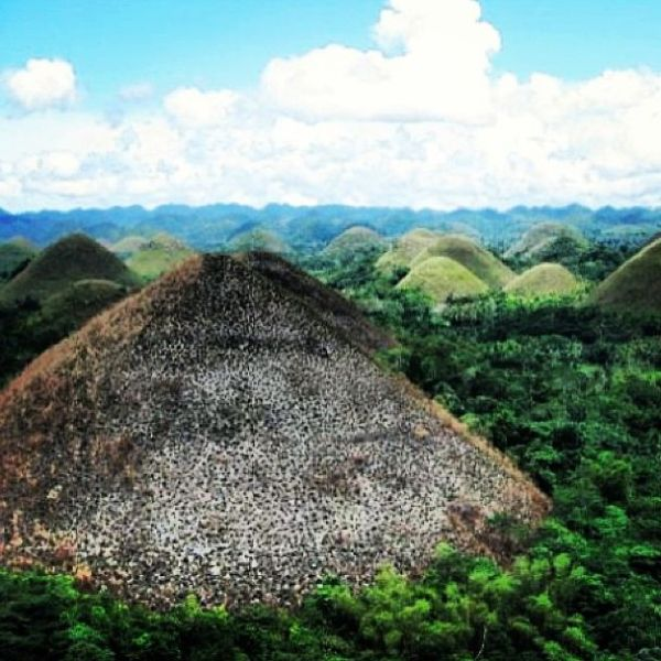 The Chocolate Hills.