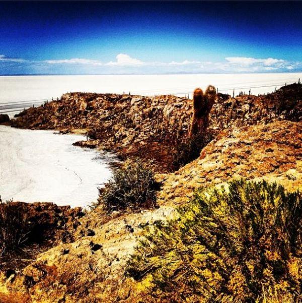 Fish Island, Uyuni, Bolivia